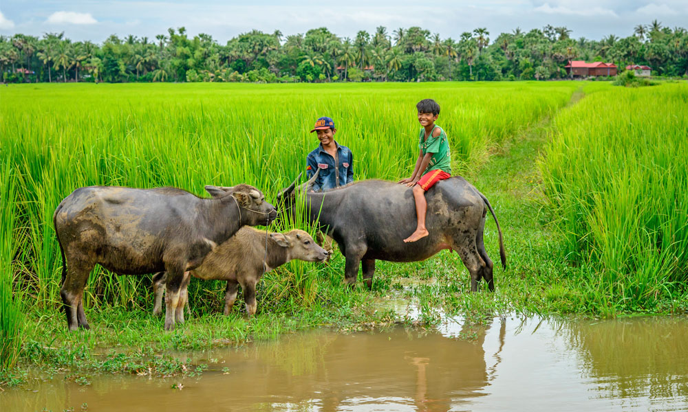siem reap countryside adventure